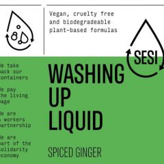 Washing Up Liquid – Spiced Ginger
