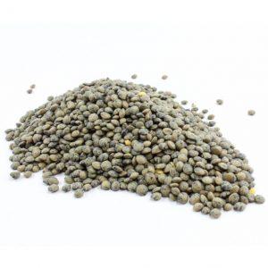 Speckled Lentils